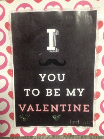 I 'mustache' you to be my valentine!  BAHAHAHA